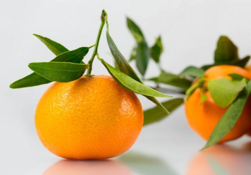 mandarin-1961570_1920